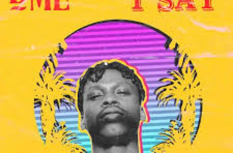 DOWNLOAD : Fireboy DML – (What If I Say)