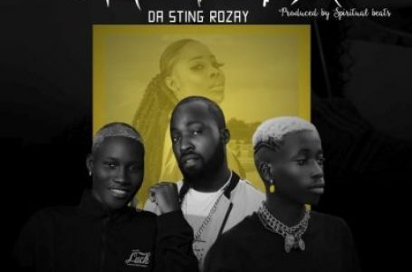 DOWNLOAD : Da-sting Rozay Ft. Zinoleesky & Lil Frosh – Omotola