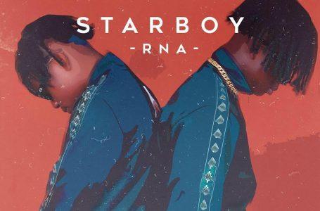 DOWNLOAD : Rema & Alpha P – Starboy