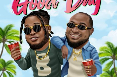 DOWNLOAD : Bawizo ft. Davido – Good Day