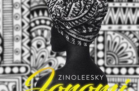 DOWNLOAD : Zinoleesky – Joromi