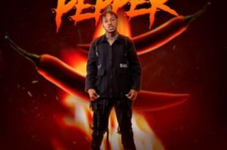 DOWNLOAD : Davolee – Pepper
