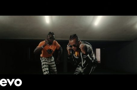 VIDEO: Selebobo – OVA ft. Tekno
