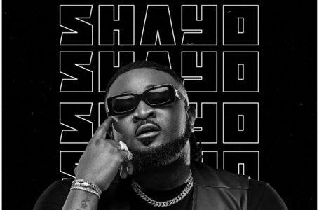 DOWNLOAD : Ceeza Milli ft Wizkid – Shayo