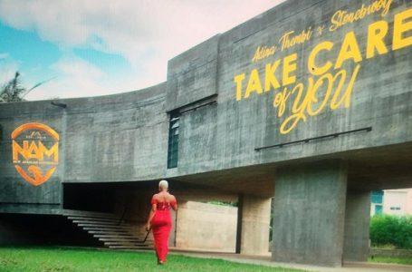 VIDEO: Adina – Take Care Of You Ft. Stonebwoy