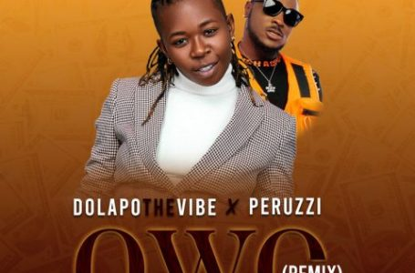 DOWNLOAD : DOWNLOAD : DolapoTheVibe ft Peruzzi – Owo (Remix)
