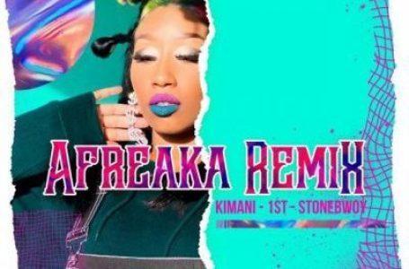 (New Song) Victoria Kimani, FKI 1st ft Stonebwoy – Afreaka (Remix)