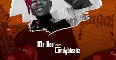 Mr Bee ft. Candy Bleakz – Heart Break