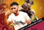 DJ Tansho X Small Badoo – I Want To Marry A Yahoo Boy